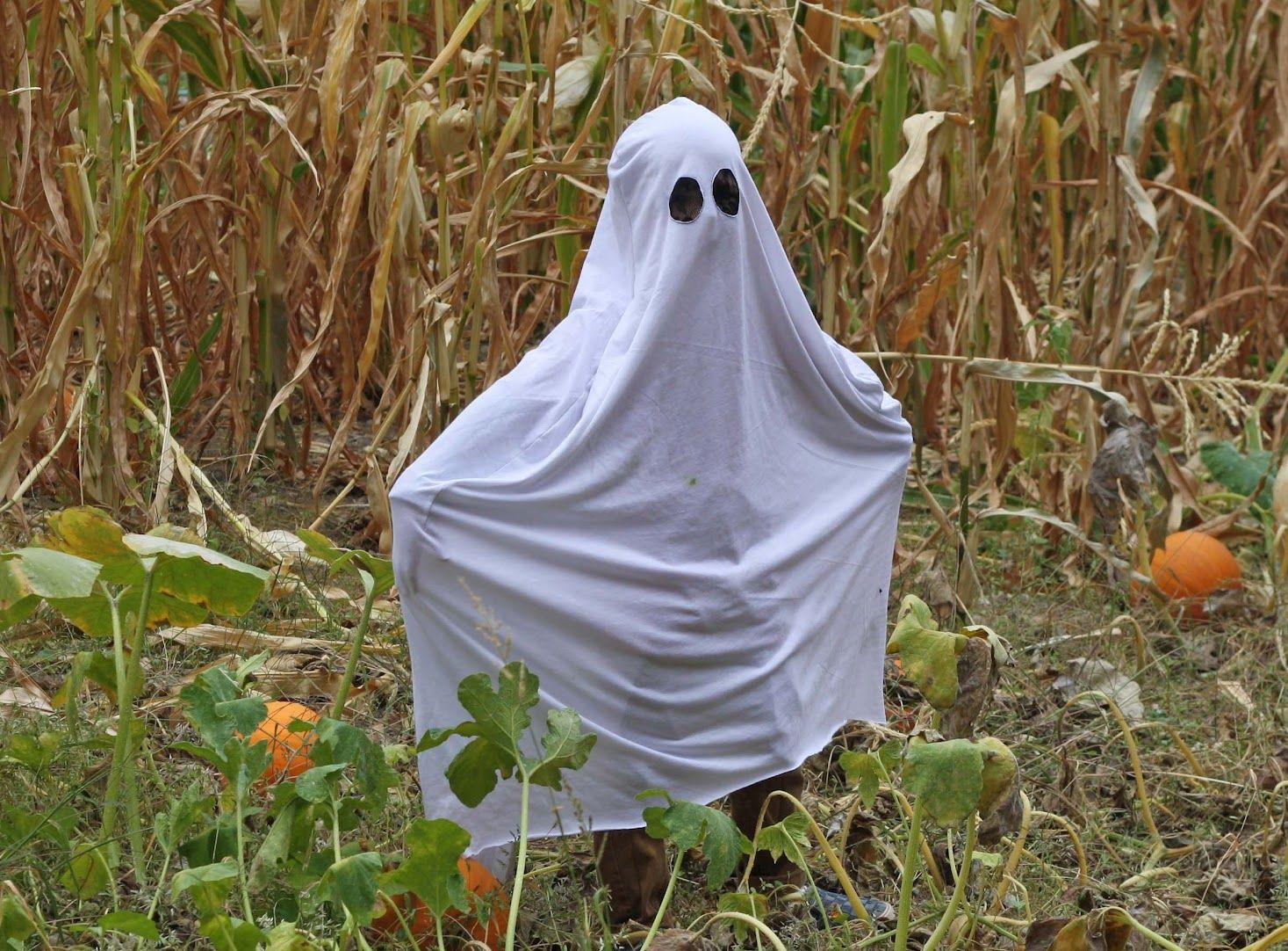 Halloween le costume de fant me blog le roi du tablier - Fabriquer fantome halloween ...